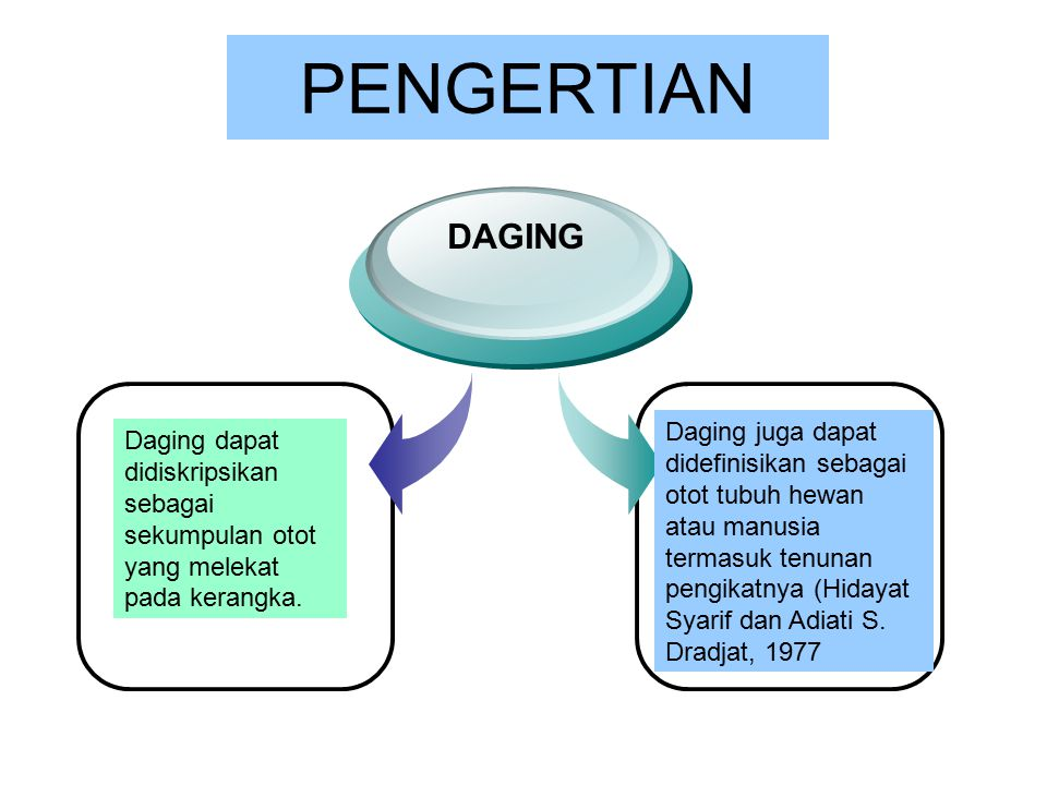 PENGERTIAN DAGING.