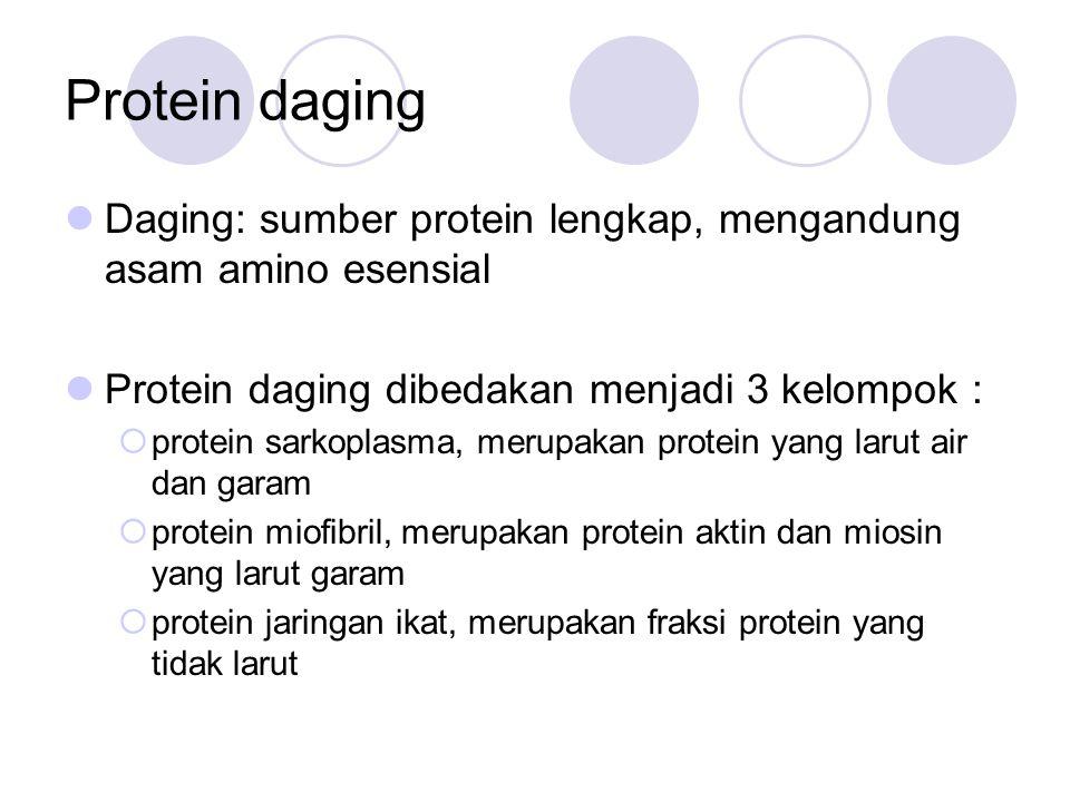 Protein daging Daging: sumber protein lengkap, mengandung asam amino esensial. Protein daging dibedakan menjadi 3 kelompok :
