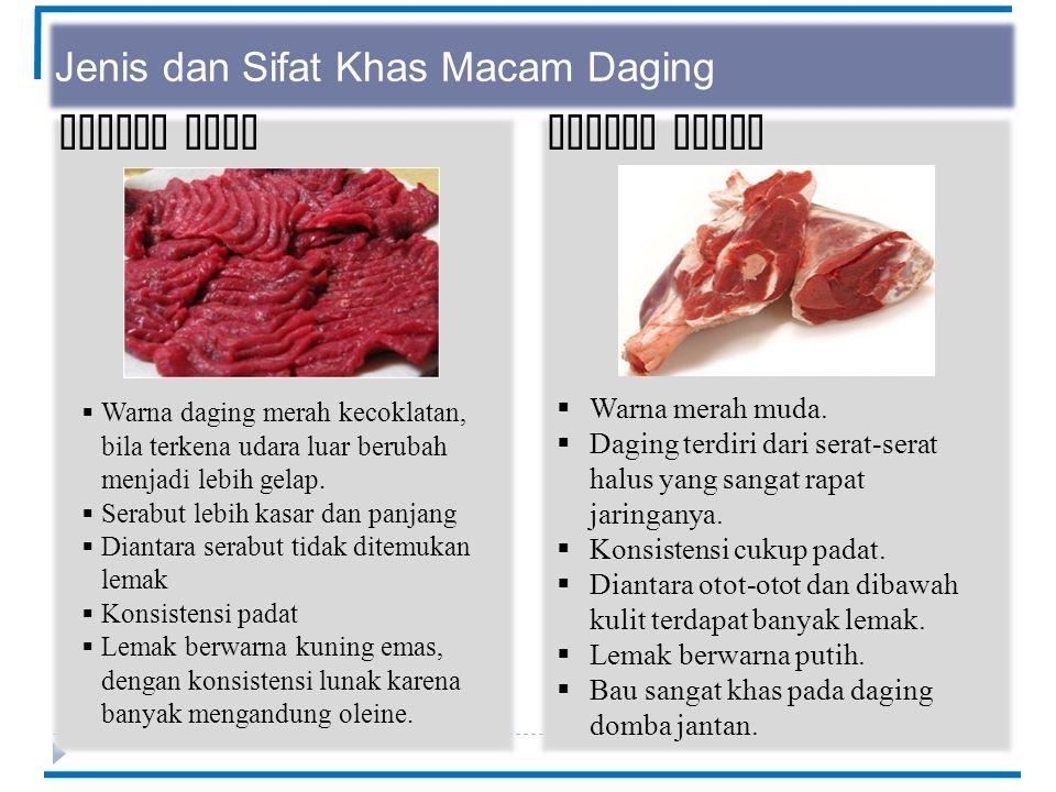 Jenis dan Sifat Khas Macam Daging