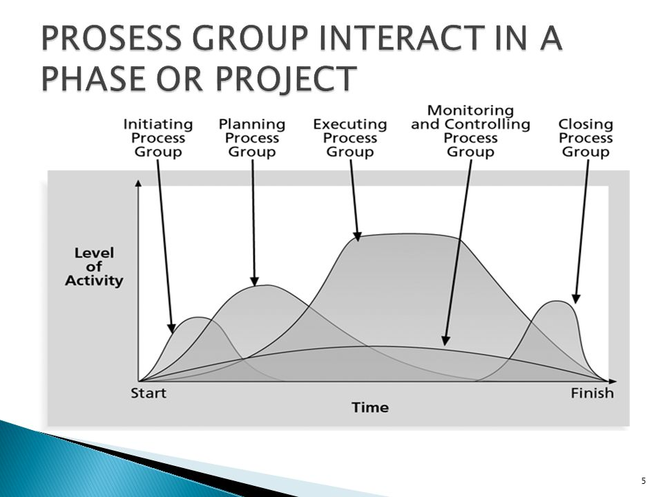 PROSESS GROUP INTERACT IN A PHASE OR PROJECT