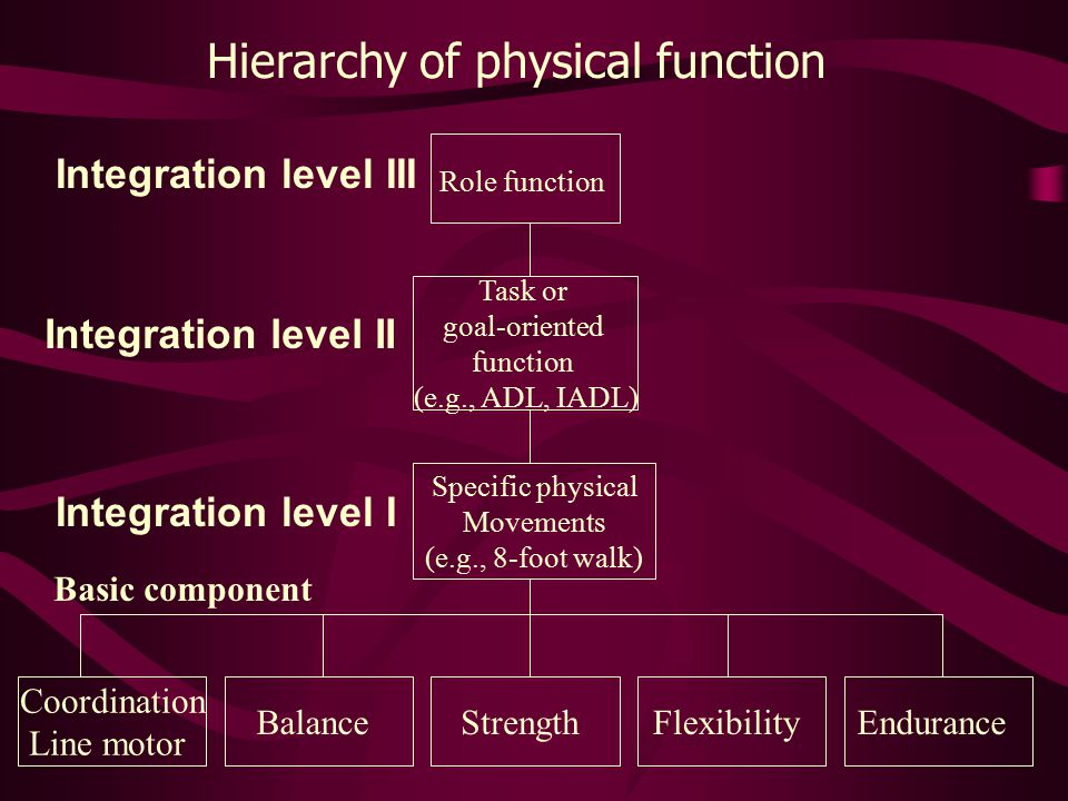 Hierarchy of physical function