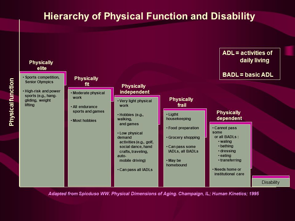 Hierarchy of Physical Function and Disability