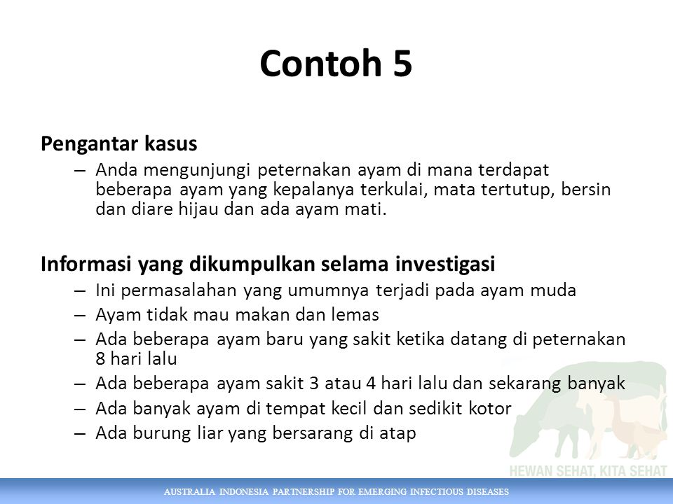 Contoh 5 Pengantar kasus Informasi yang dikumpulkan selama investigasi
