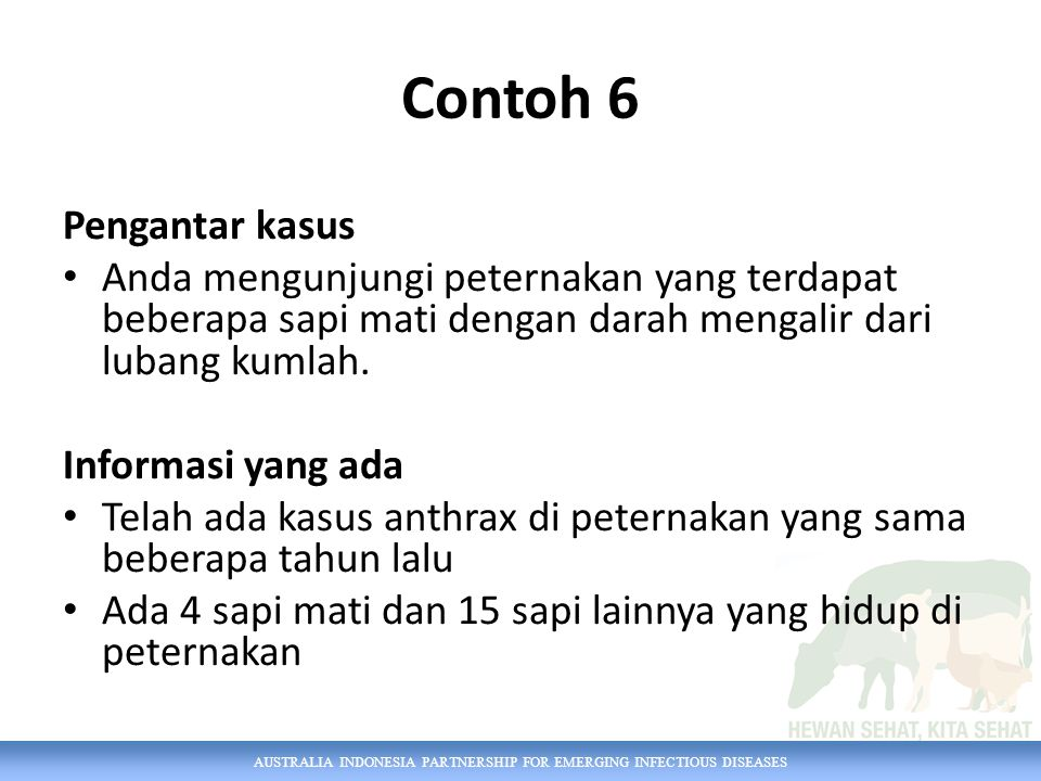 Contoh 6 Pengantar kasus