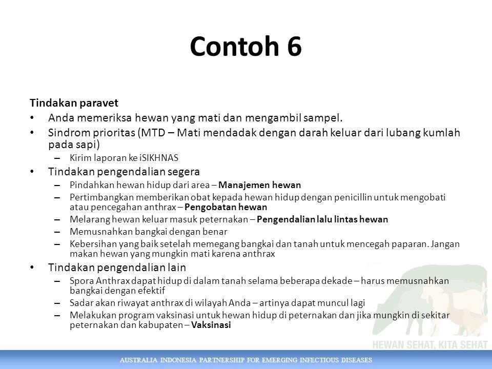 Contoh 6 Tindakan paravet