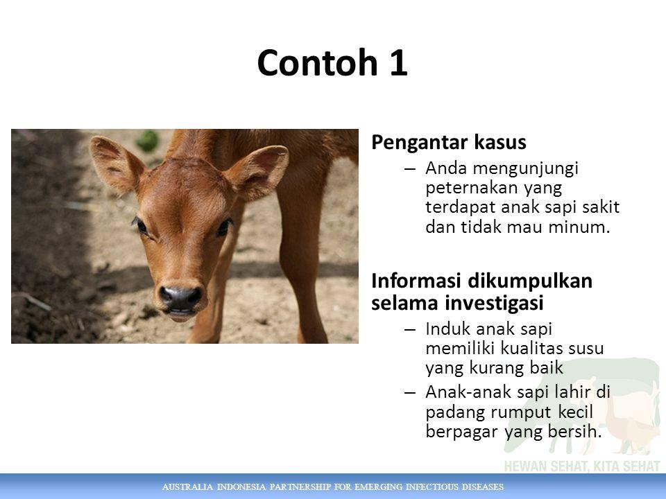 Contoh 1 Pengantar kasus Informasi dikumpulkan selama investigasi