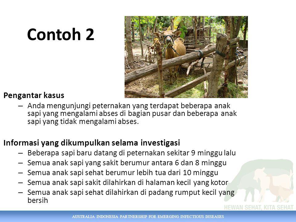 Contoh 2 Pengantar kasus Informasi yang dikumpulkan selama investigasi