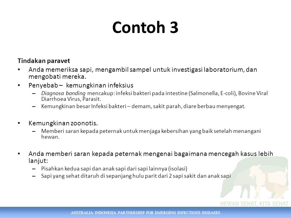 Contoh 3 Tindakan paravet
