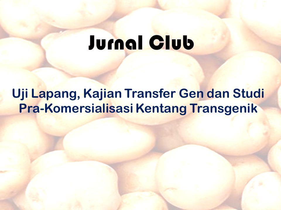 Jurnal Club Uji Lapang, Kajian Transfer Gen dan Studi Pra-Komersialisasi Kentang Transgenik