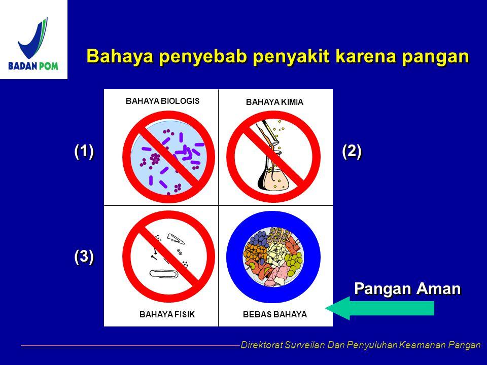 Bahaya penyebab penyakit karena pangan