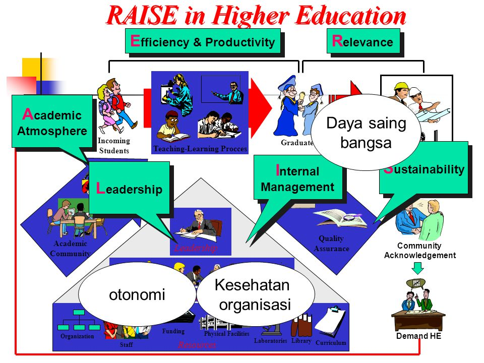 RAISE in Higher Education