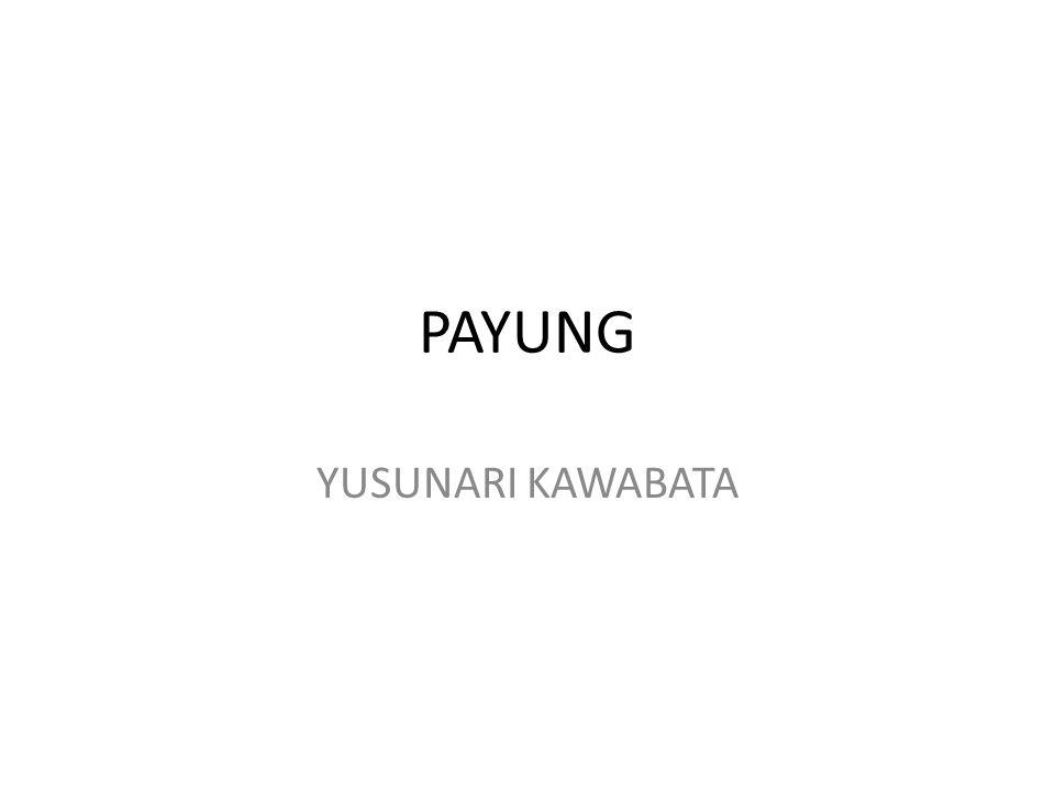 PAYUNG YUSUNARI KAWABATA bawa payung nyata