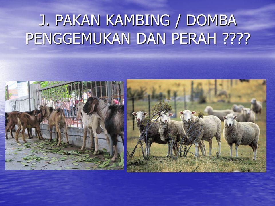 J. PAKAN KAMBING / DOMBA PENGGEMUKAN DAN PERAH