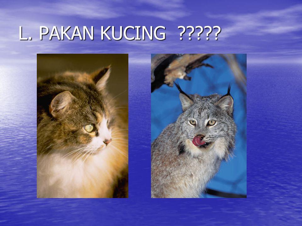L. PAKAN KUCING