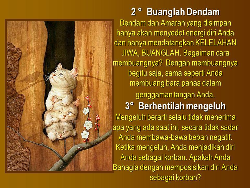 2 ° Buanglah Dendam Dendam dan Amarah yang disimpan hanya akan menyedot energi diri Anda dan hanya mendatangkan KELELAHAN JIWA, BUANGLAH.