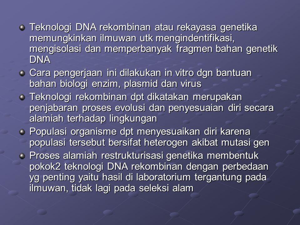 Teknologi DNA rekombinan atau rekayasa genetika memungkinkan ilmuwan utk mengindentifikasi, mengisolasi dan memperbanyak fragmen bahan genetik DNA