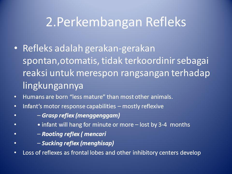 2.Perkembangan Refleks