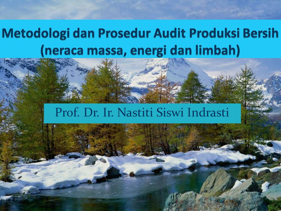 Prof. Dr. Ir. Nastiti Siswi Indrasti