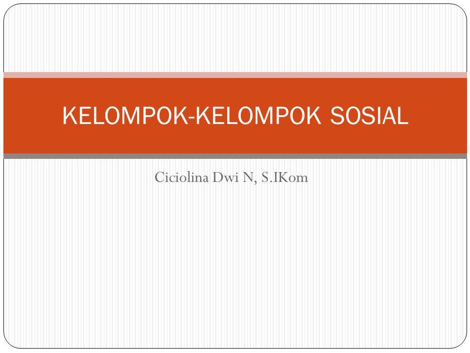 KELOMPOK-KELOMPOK SOSIAL