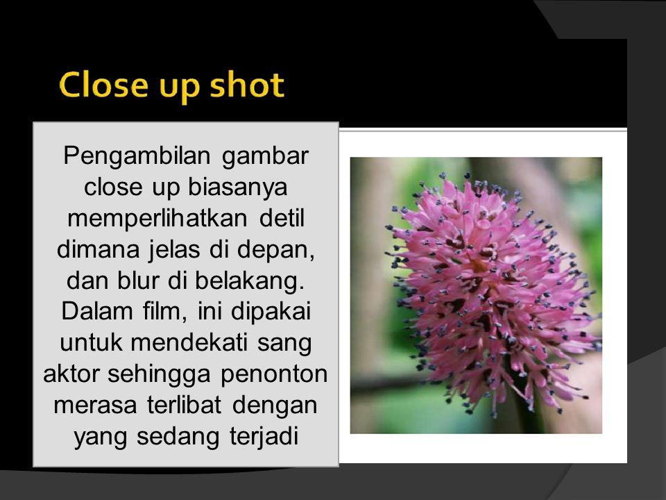 Pengambilan gambar close up biasanya memperlihatkan detil dimana jelas di depan, dan blur di belakang.