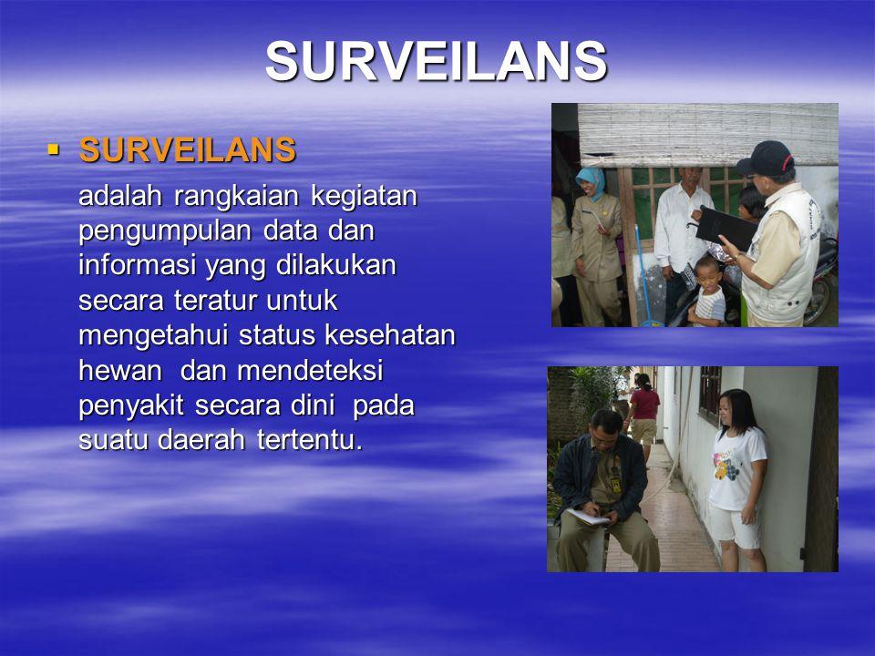 SURVEILANS SURVEILANS