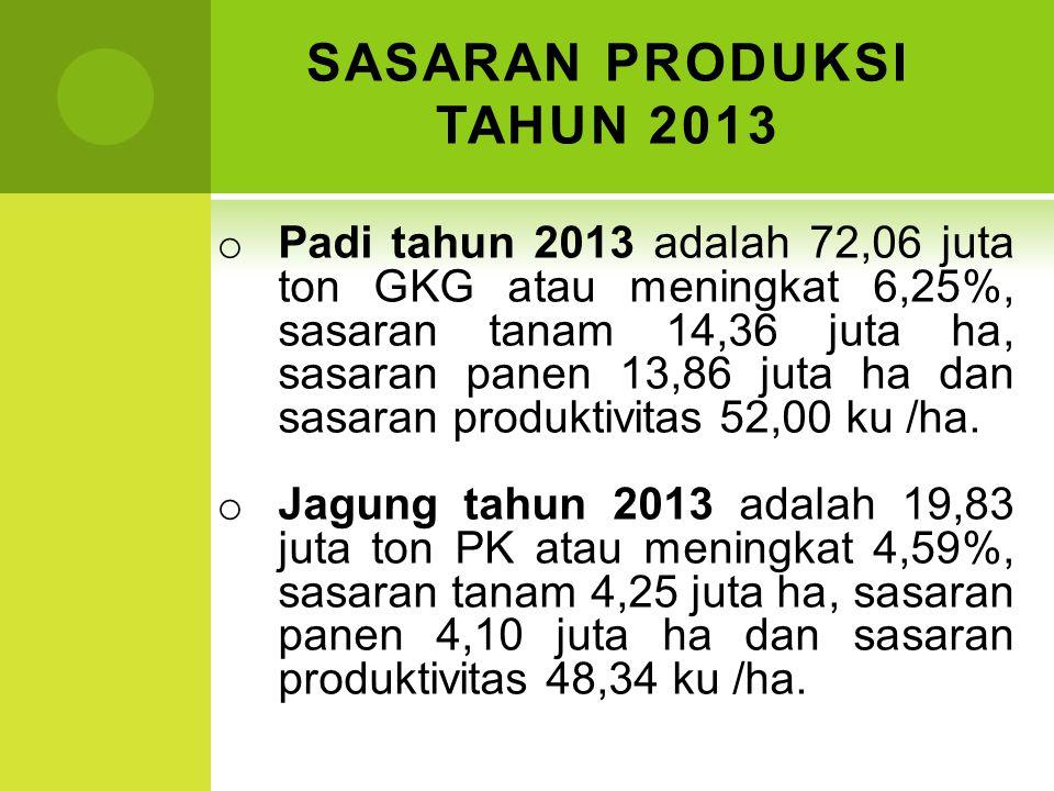 SASARAN PRODUKSI TAHUN 2013