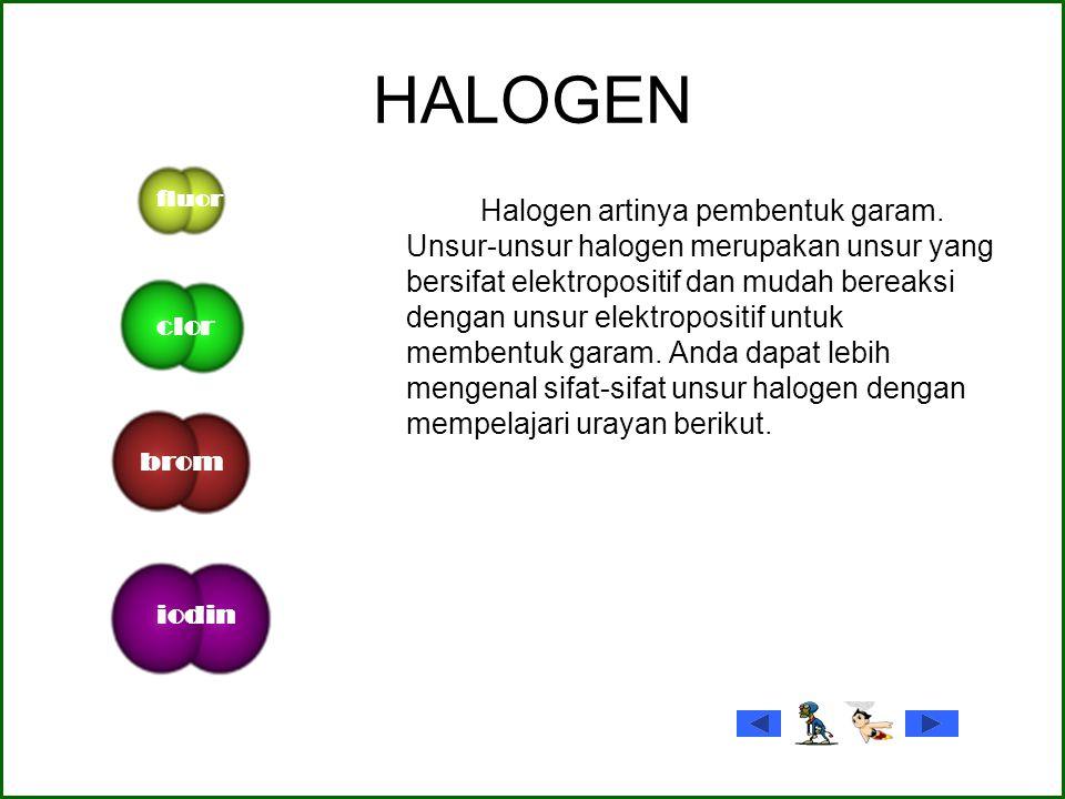 HALOGEN fluor. clor. brom. iodin.
