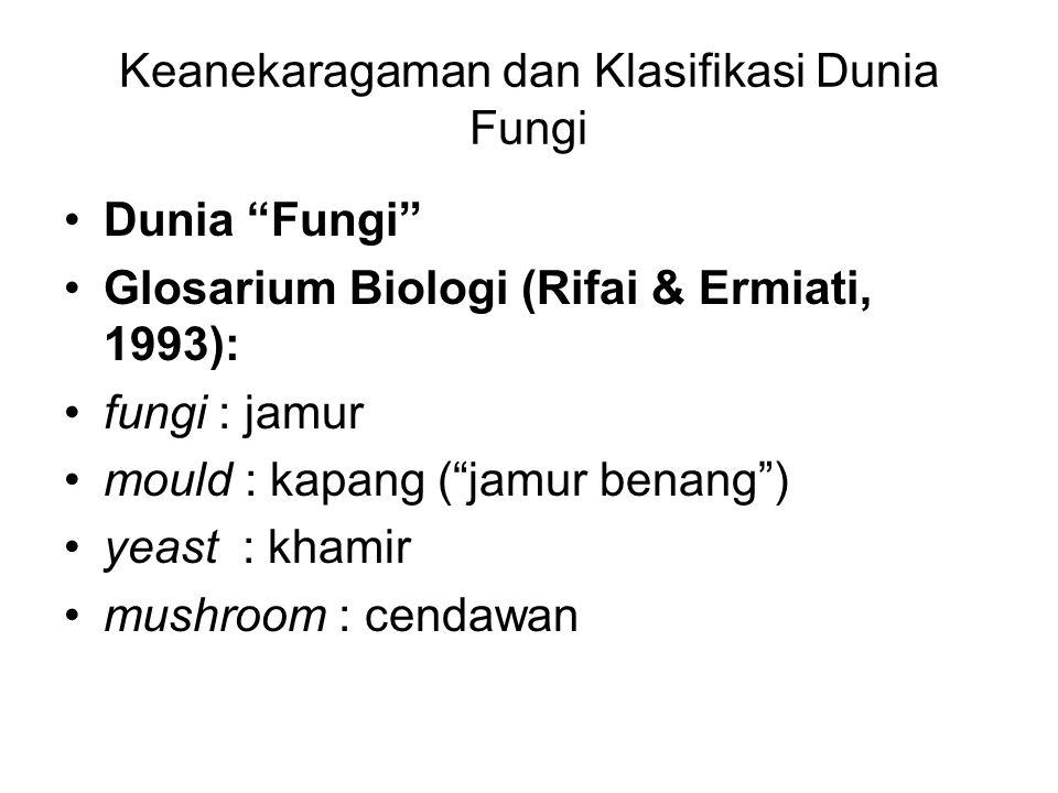 Keanekaragaman dan Klasifikasi Dunia Fungi