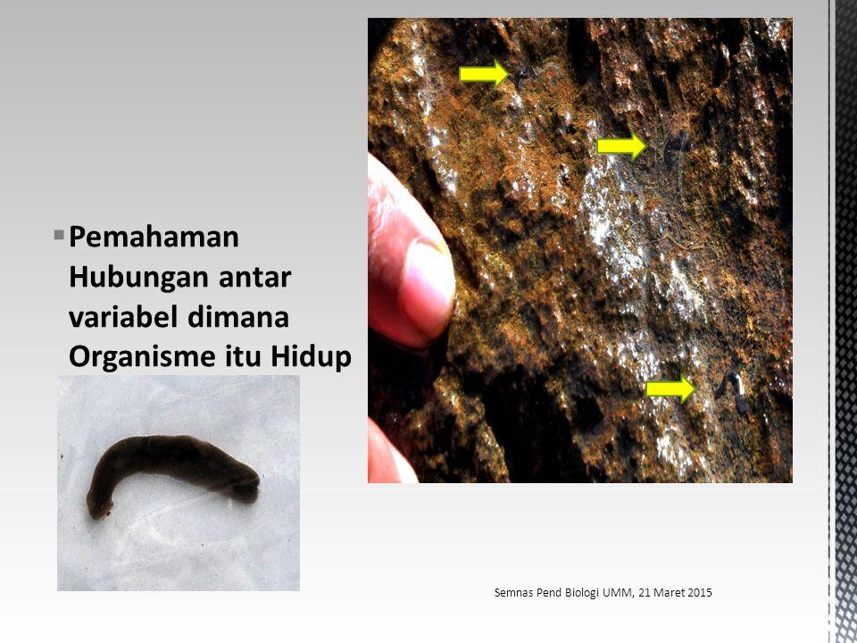 Pemahaman Hubungan antar variabel dimana Organisme itu Hidup