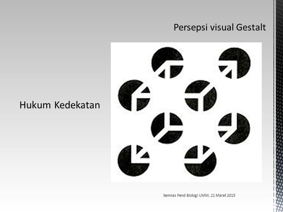 Persepsi visual Gestalt