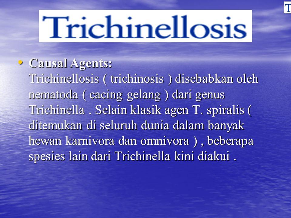 Causal Agents: Trichinellosis ( trichinosis ) disebabkan oleh nematoda ( cacing gelang ) dari genus Trichinella .