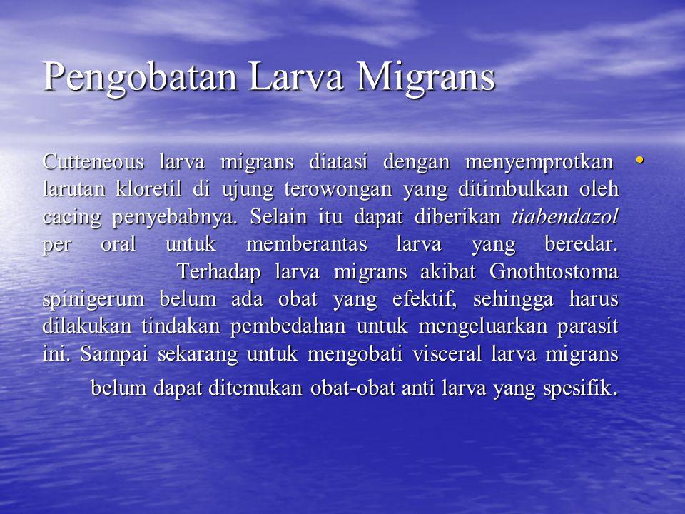 Pengobatan Larva Migrans