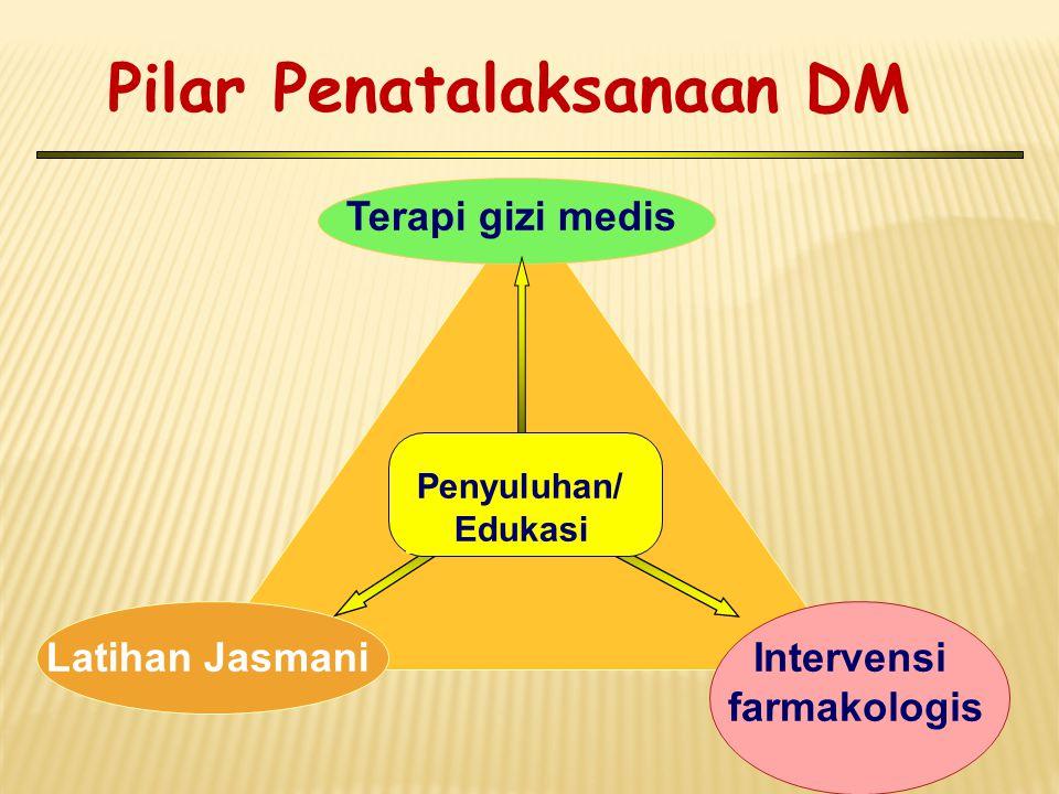 Pilar Penatalaksanaan DM