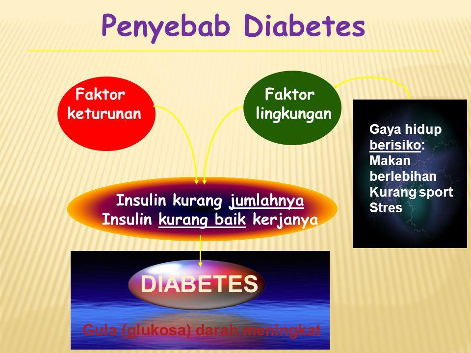 Penyebab Diabetes DIABETES Faktor keturunan Faktor lingkungan