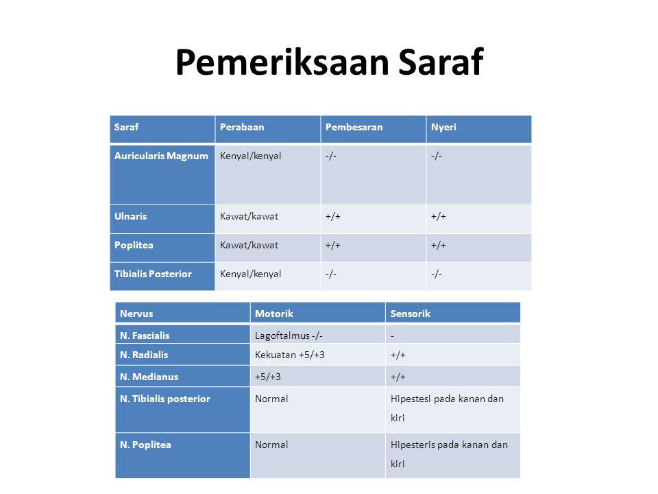 Pemeriksaan Saraf Saraf Perabaan Pembesaran Nyeri Auricularis Magnum