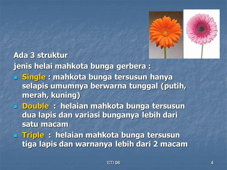 jenis helai mahkota bunga gerbera :