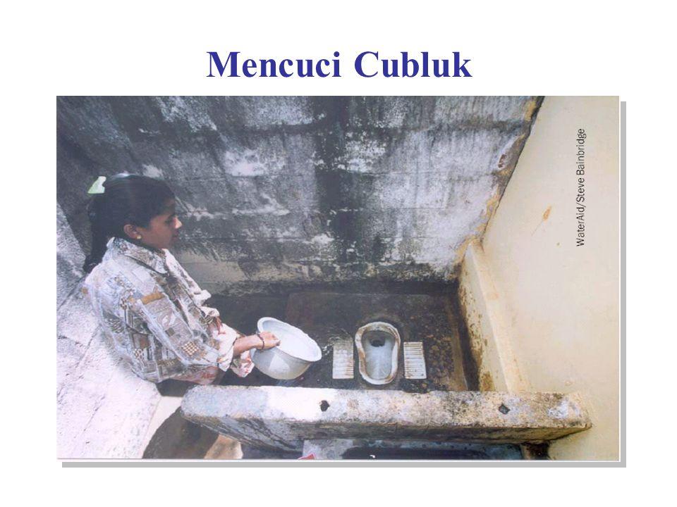 Mencuci Cubluk