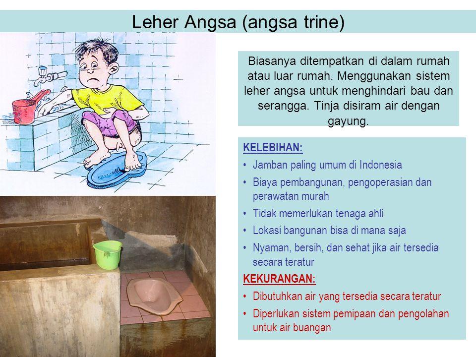 Leher Angsa (angsa trine)