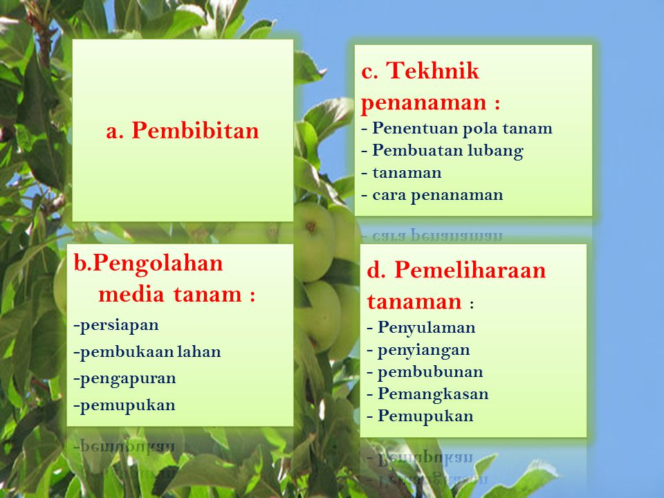 b.Pengolahan media tanam : d. Pemeliharaan tanaman :