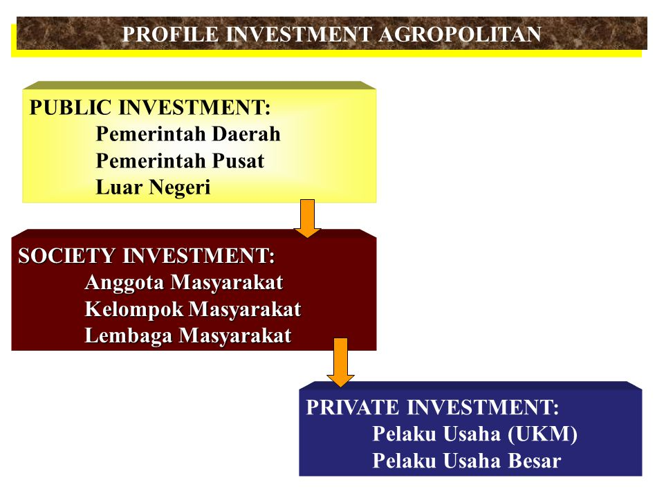 PROFILE INVESTMENT AGROPOLITAN