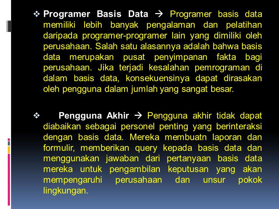 Programer Basis Data  Programer basis data memiliki lebih banyak pengalaman dan pelatihan daripada programer-programer lain yang dimiliki oleh perusahaan. Salah satu alasannya adalah bahwa basis data merupakan pusat penyimpanan fakta bagi perusahaan. Jika terjadi kesalahan pemrograman di dalam basis data, konsekuensinya dapat dirasakan oleh pengguna dalam jumlah yang sangat besar.