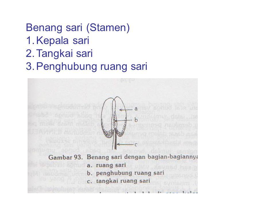 Benang sari (Stamen) Kepala sari Tangkai sari Penghubung ruang sari