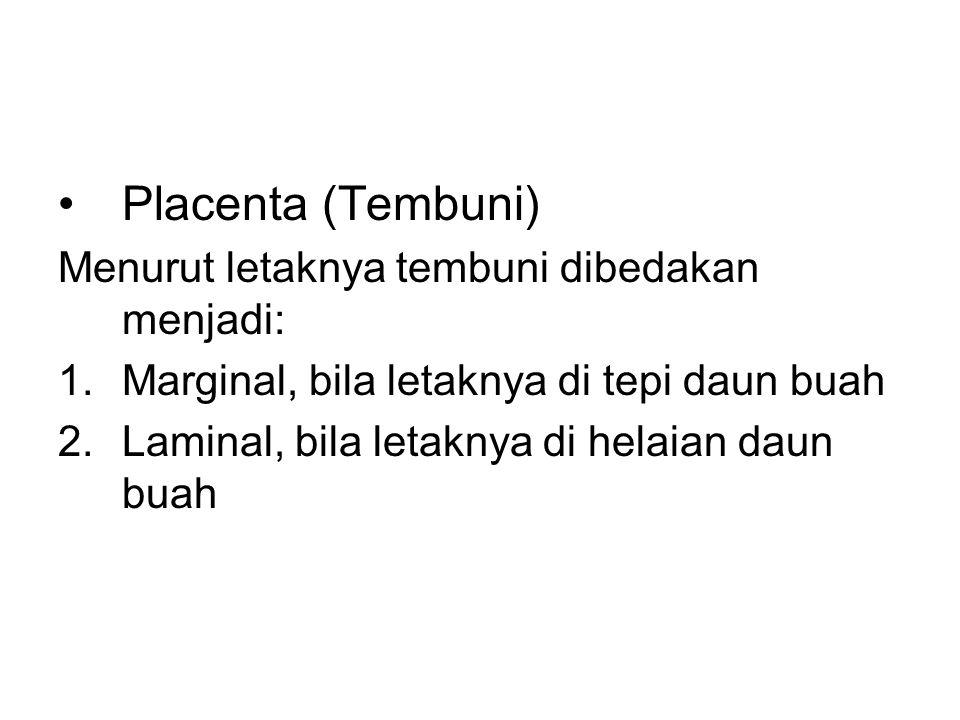 Placenta (Tembuni) Menurut letaknya tembuni dibedakan menjadi: