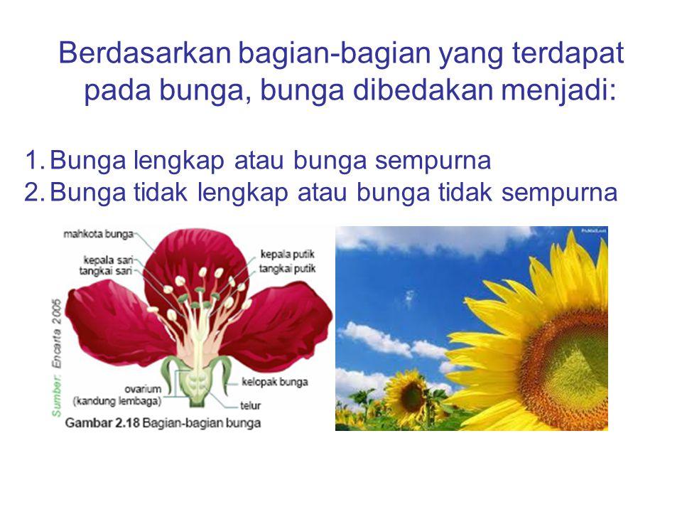 Berdasarkan bagian-bagian yang terdapat pada bunga, bunga dibedakan menjadi: