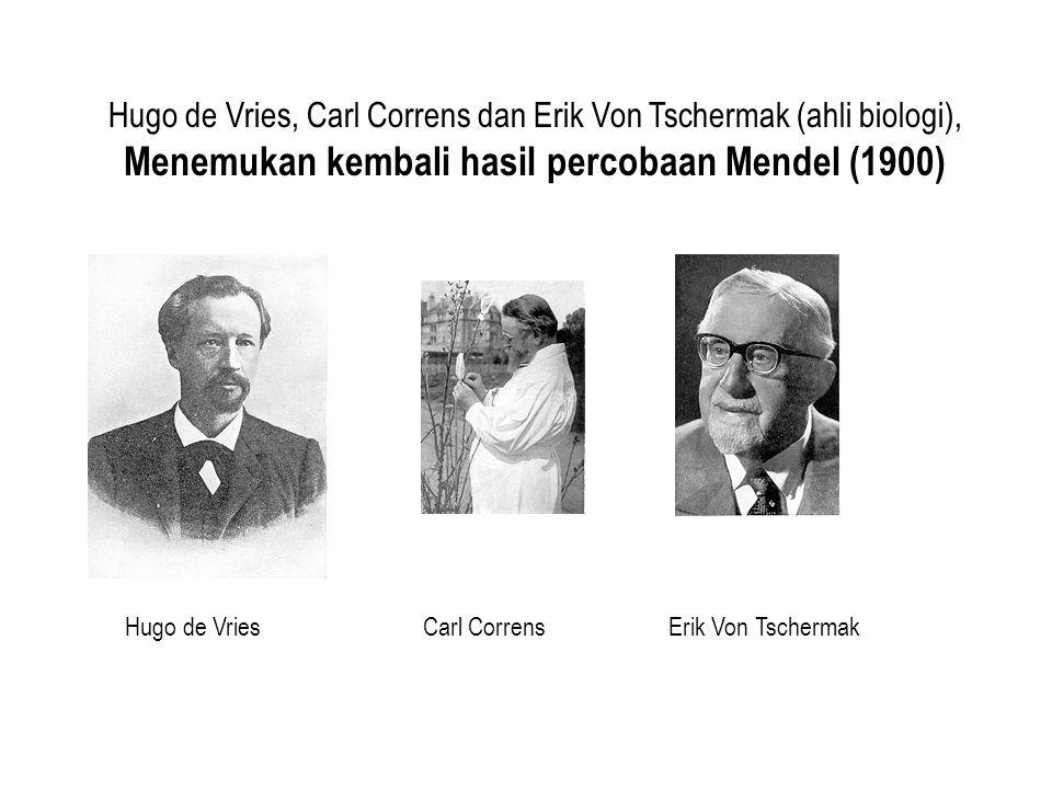 Hugo de Vries, Carl Correns dan Erik Von Tschermak (ahli biologi), Menemukan kembali hasil percobaan Mendel (1900)