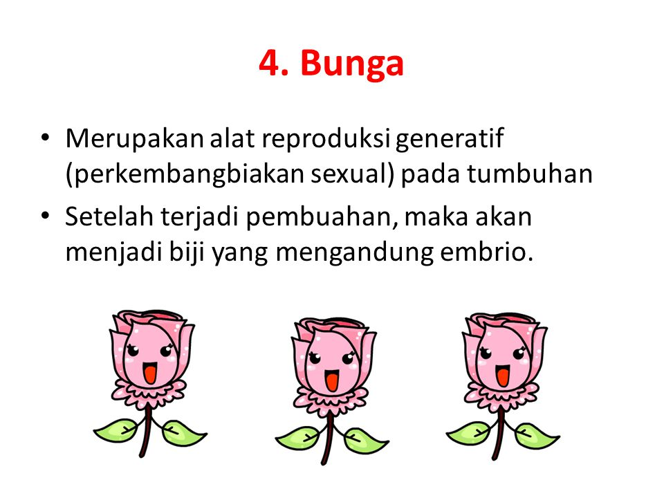 4. Bunga Merupakan alat reproduksi generatif (perkembangbiakan sexual) pada tumbuhan.