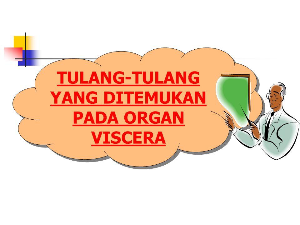 TULANG-TULANG YANG DITEMUKAN PADA ORGAN VISCERA