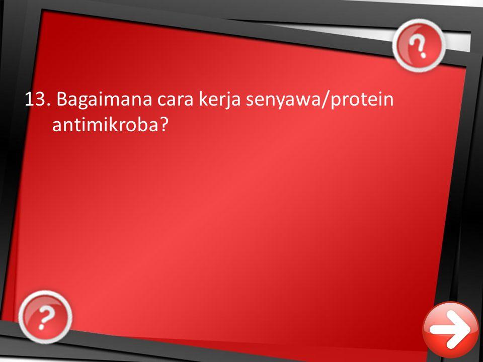 13. Bagaimana cara kerja senyawa/protein antimikroba