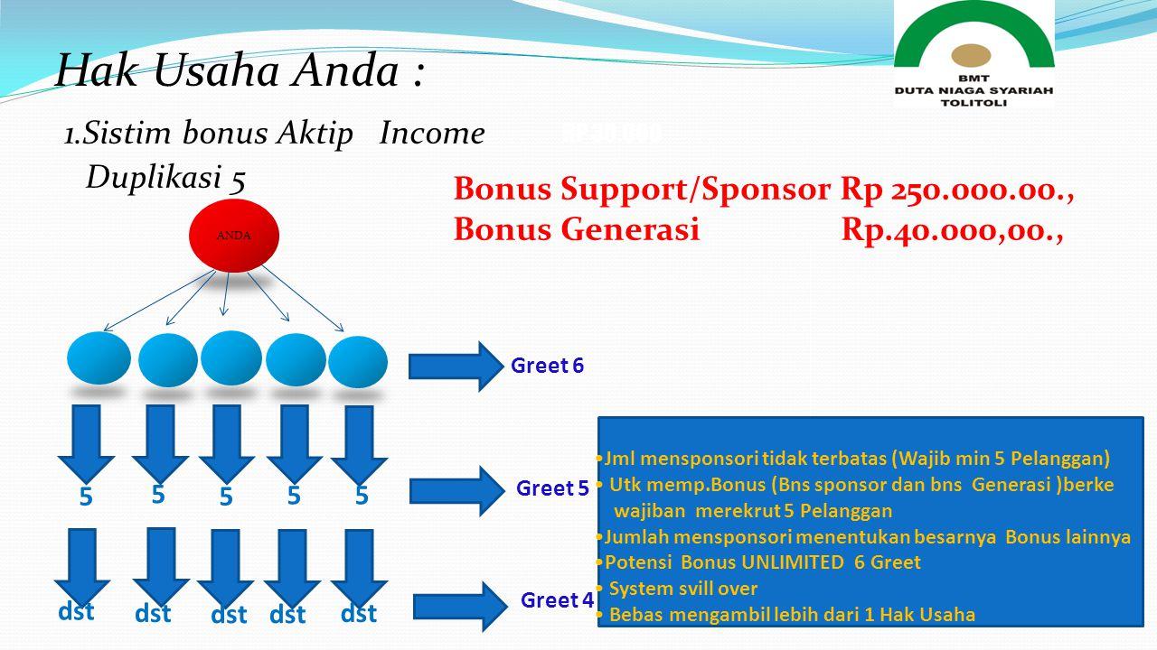 1.Sistim bonus Aktip Income