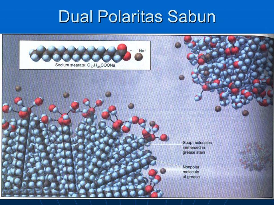 Dual Polaritas Sabun